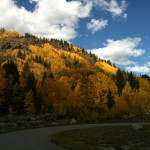 Rockies Fall 1